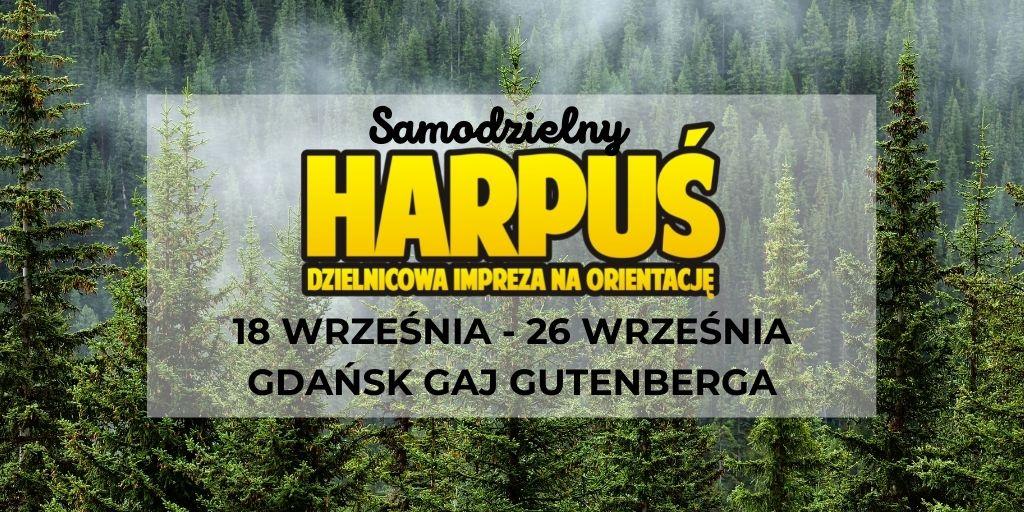 na tle zielonego iglastego lasu: samodzielny harpuś impreza na orientację 18 -26 września Gaj Gutenberga